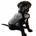 Product image for TechNiche Evaporative Cooling Dog Coats